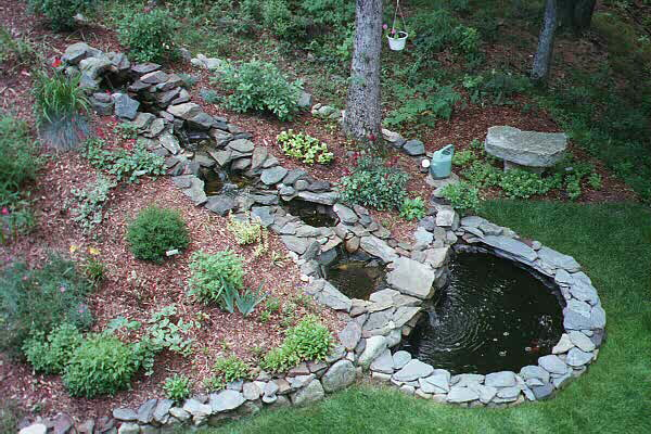My Japanese Water Garden Won An Award At Home Depot In 2000