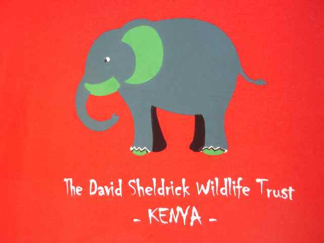 The Davick Sheldrick Wildlife Trust cares for orphaned elephants...see them here!