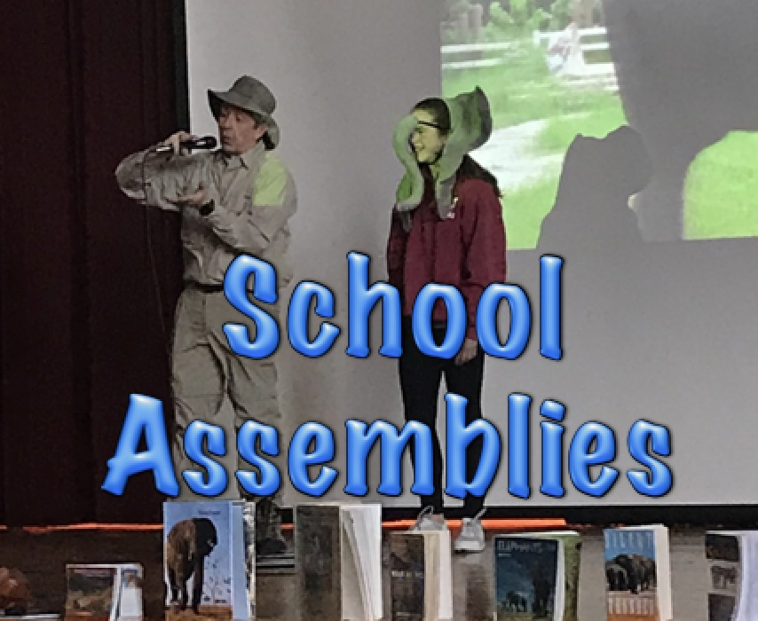 STEM School Assemblies